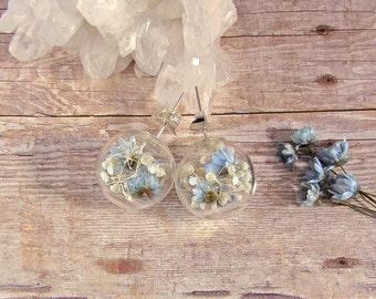 Real flower earrings, white and blue flowers, terrarium studs, floral studs, glass globe earrings