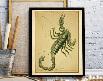 Constellation Scorpio, Solar Celestial Map Vintage Print , Celestial Star Charts, Celestial Charts, Modern Constellations: Scorpio