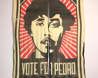 Vote For Pedro socks