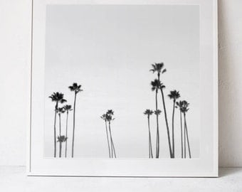 Palm Trees Wall Art Print, Black and White Print, Palm Trees Photography Print, Palm Decor, Square Print Instant Download PRINTABLE Art
