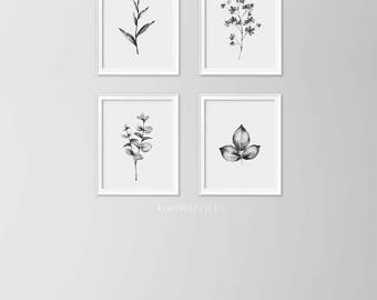 Set of 4 minimalist plants - Monochrome botanical art - Botanical art set - Black and white art prints - Minimalist decor - Leaves plants