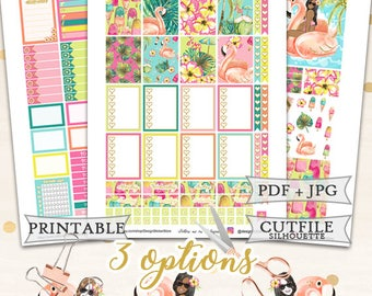 Resort Printable Planner Stickers for Erin Condren Lifeplanner/Summer Planner Stickers/Tropical Planner Stickers/Summer Weekly kit/