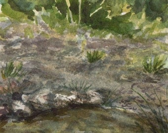 Reflections on a Forest Pond, Miniature Watercolour Painting, Original Artwork