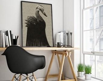 Swan- printable digital illustration