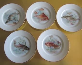 5 Plate FISH Bavaria