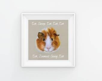 Guinea Pig Art, Guinea Pig Gift, Guinea Pig Print, Funny Guinea Pig, Guinea Pig Wall Art, Guinea Pig Room Decor, Guinea Pig Illustration