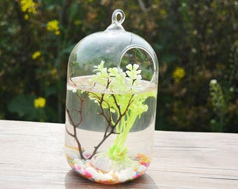 Terrarium Succulents Plant Landscape Gift Worldwide Store Artificial Blowing Garden Ornament