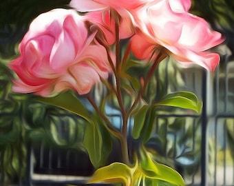Digitally Enhanced 8x10 Photo Print - Pink Roses