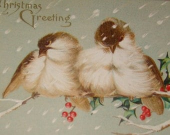 SALE Vintage Christmas Postcards (2 Birds)