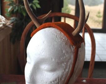 Real deer antler and natural deerskin headdress headband stag Horned God Herne Cernunnos pagan totem ritual Beltane Wicca crown