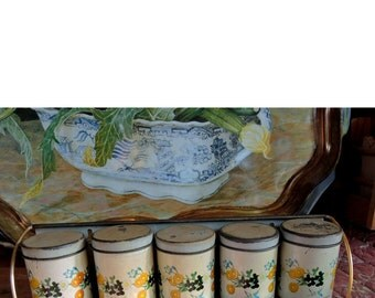 Vintage Chippy Spice Tins - 5 Spice Tins By The Meister Company - Made In Brazil