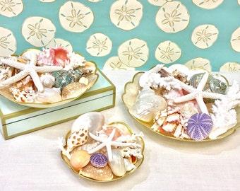 Seashells and Starfish Display on Capiz Shell Plates - 3 Sizes - beach decor coastal wedding sea shells shells ocean star fish hostess gift
