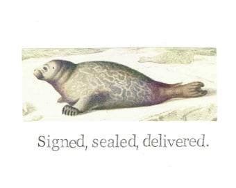 Signed Sealed Delivered Natural History Seal Card | Funny Animal Humor Vintage Nature Love Friendship Wildlife Men Women