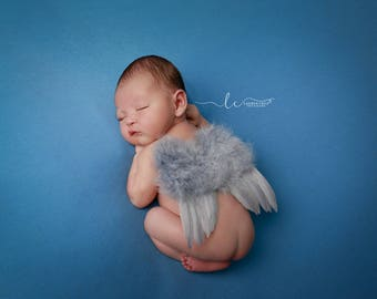 Light Grey Feather Angel Baby Wings for photo shoots for newborn babies, perfect for boys! Bebe, muchacho, Lil Miss Sweet Pea