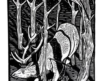 Elk - Linoleum print on paper - Kathleen Neeley