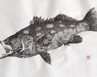 CALICO Kelp BASS Original Gyotaku - traditional Japanese fish art (1)