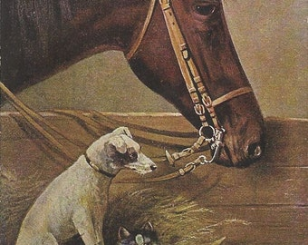 Bay and Friends - Antique 1900s Artist-signed Horse, Terrier and Tabby Postcard