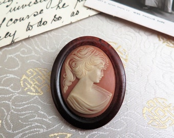 Vintage Faux Cameo Brooch - Vintage Damart Brooch - Faux Tortoiseshell Brooch - Vintage French Brooch - Lady - Woman - Cameo - Gift for Her