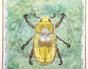 """Original Watercolor """"Midas"""" Painting - 3 1/2 x 3 1/2 Beetle"""