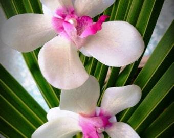 IVORY ORCHID Hair flowers - Wedding, Hair clip, Headpiece, Bridal, Hair piece, Flower fascinator, Tropical Flower, Hair Accessory, Pearl