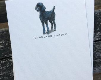 Standard Poodle Dog Note Card Set