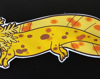 Axolotl Sticker