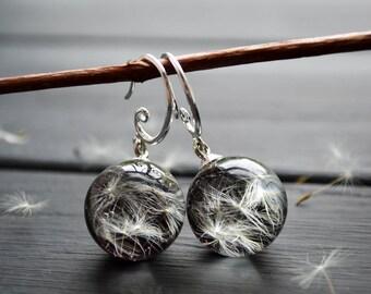 Flower jewelry - Dandalion seeds earrings - Hook Earrings - Pressed flowers - Real dandelion seeds on black