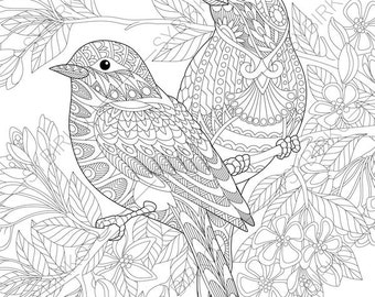 Adult Coloring Pages Sparrow Birds Zentangle Doodle For Adults Digital Illustration