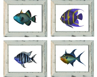 4 Sea Life Tropical Fish Prints. Purple Chaetodon. Balistes Fish Tropical Fish Set of 4 Prints on Watercolor Paper. Discount Prints