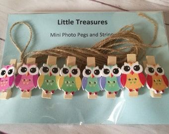 Photo pegs ~ Picture Pegs ~ owl pegs ~ artwork ~ display photos