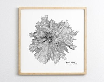 Mount Hood Oregon Topographic Map - Art Print