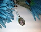 Silver Birch Nature Photo...
