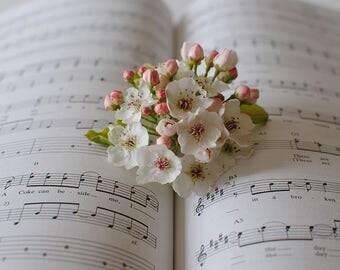Photography, Sheet Music, Floral Print, Home Decor, Wall Art, Print