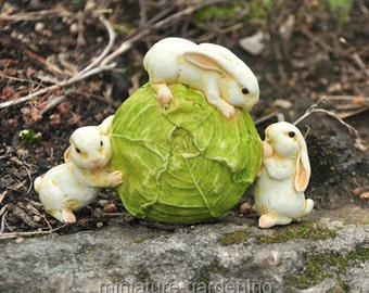 Rabbits Rolling Cabbage for Miniature Garden, Fairy Garden