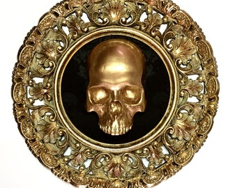 Big frame skull gold