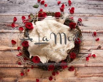 Newborn Digital Photography Background Red Rose Wreath set of 4
