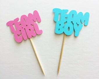 12pc Team Girl Team Boy cupcake toppers, Team Pink Team Blue cupcake toppers, Team Girl Team Boy food picks, Gender reveal party decor