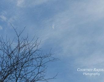 The Moon Print