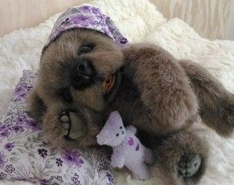 Sonia, a Teddy bear