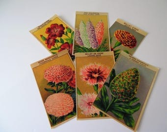 Six French Flower Seed Packet Labels. Paper Seed Packet Illustrations. Flower Illustrations. Vintage labels.