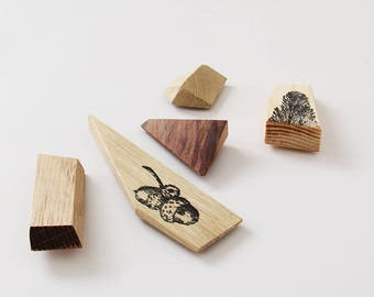 Fridge magnets, Wooden magnets, Magnets, Refrigerator magnets, Giveaway, Kitchen decor, Pack of 5 magnets, Wedding giveaway.