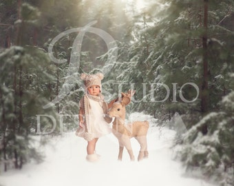 17 Winter Green Wood digital backdrops, Instant download