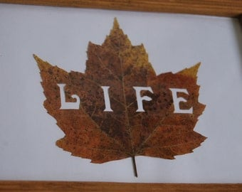 "Leaf Art ""LIFE"", Fall Maple Leaves, Framed Nature Wall Decor, Pressed Leaf"