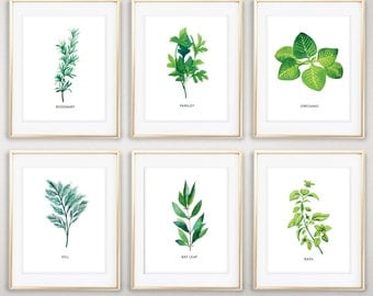 Instant Download, Set of 6 Herbs, Watercolor Herbs, Kitchen Decor, Herbs, Oregano, Basil, Rosemary, Bay Leaf, Dill, Parsley, Kitchen
