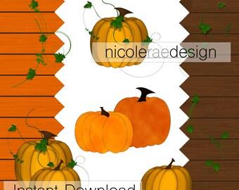 Pumpkins and Vines - Clipart