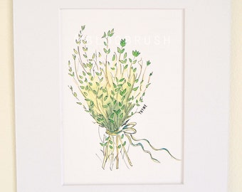 Thyme Watercolor Print (Matted)