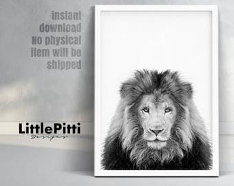 Safari nursery, lion print, peekaboo print, safari animals art, lion poster, safari nursery print, lion photo, black white photo, large art