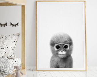 Baby Monkey Print, Monkey Print, Monkey Wall Art, Safari Animal, Safari Animal Print, Nursery Decor, Nursery Print, Nursery Printable