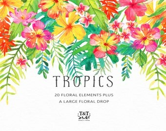 Tropics Watercolor Flower Clipart Elements