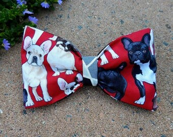 French Bulldog Bow Tie